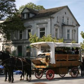 Reisen wie zu Kaisers Zeiten: Stadttour mit Pferd & Wagen